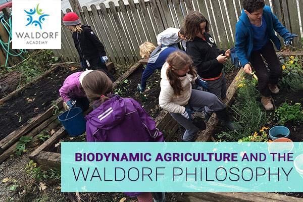Biodynamic Agriculture And The Waldorf Philosophy | Waldorf Academy | Toronto Private School Childcare